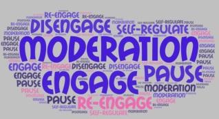 moderation words