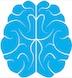 brain small